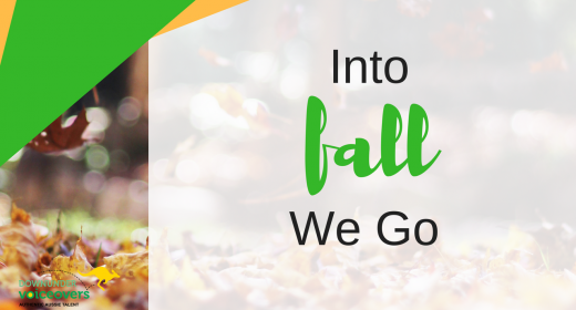 Into Fall We Go